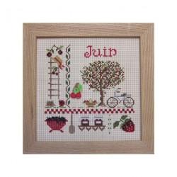 Juin (Kit)