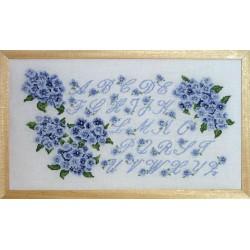 ABC hortensia bleu (Fiche)