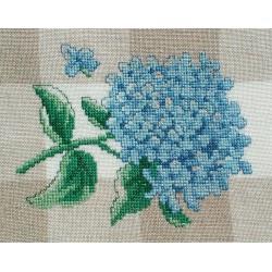 Petit hortensia (Fiche)