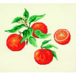 Oranges (Fiche)