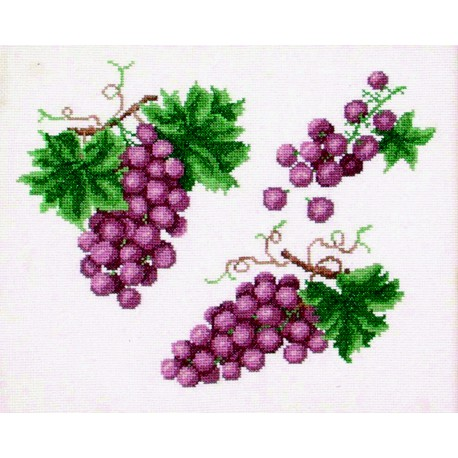 Raisins (Fiche)