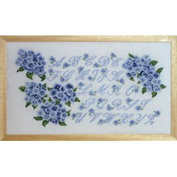 ABC hortensia bleu (Kit)