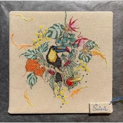 Le Toucan (fiche)